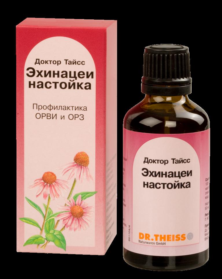 Эхинацея настойка как сделать - Schol52rgd.ru